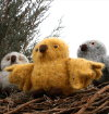 Fiber Trends Baby Owl Takes Flight Kit