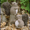 Fiber Trends Felted Squirrel Kit