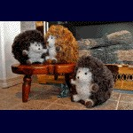 Fiber Trends Huggable Hedgehogs FT-228