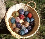 Felting Fleece Pack, Multi-Colored Merino